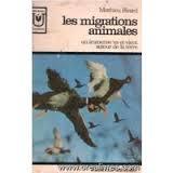 Les migrations animales : un immense va-et-vient autour de la terre, Ricard, Matthieu