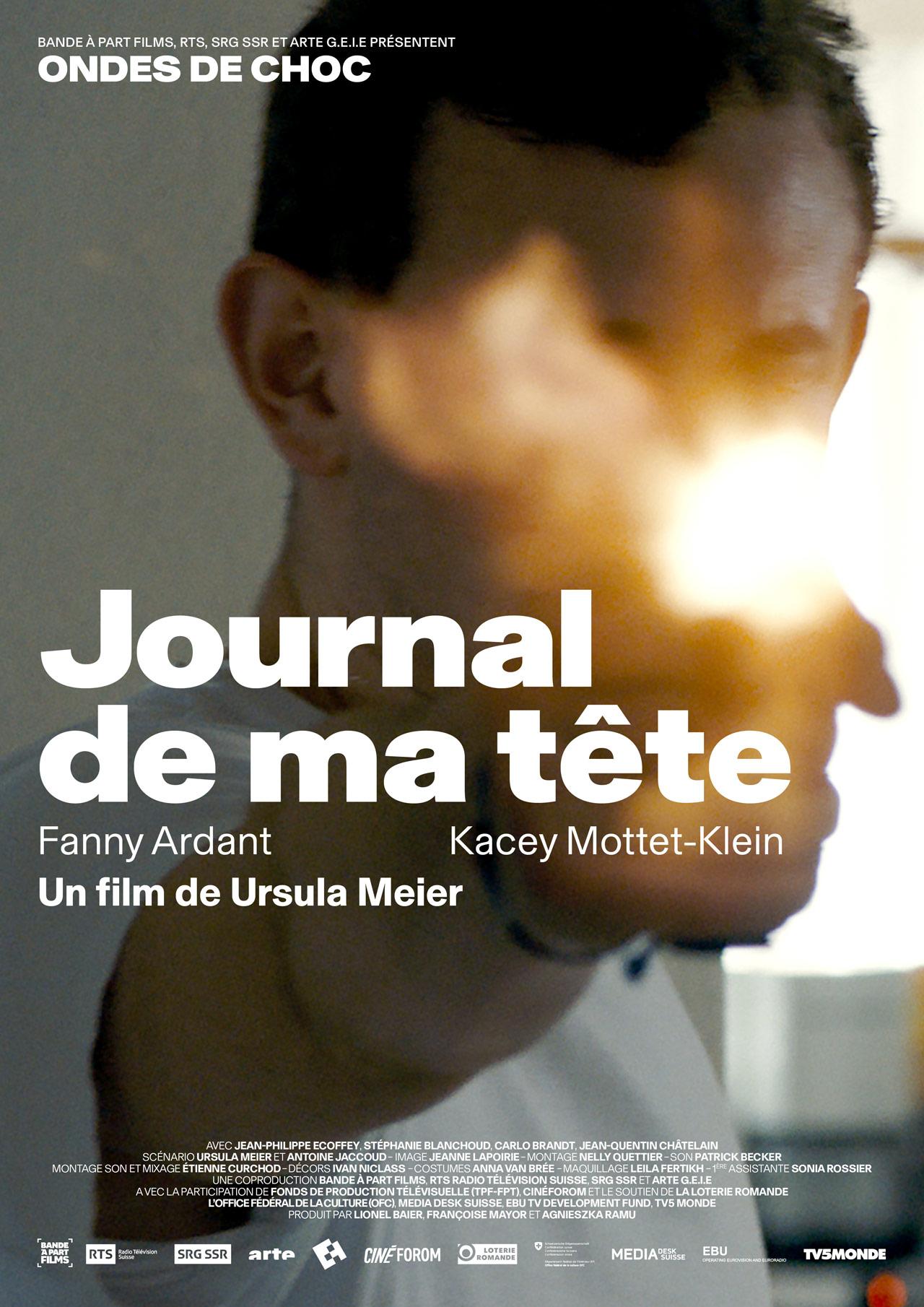Ondes de choc [3] : Journal de ma tête, Meier, Ursula